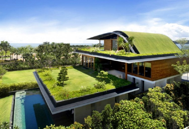 green roof a thing of beauty