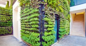 Urban Garden Ideas Archives Urbanfarmonline Com