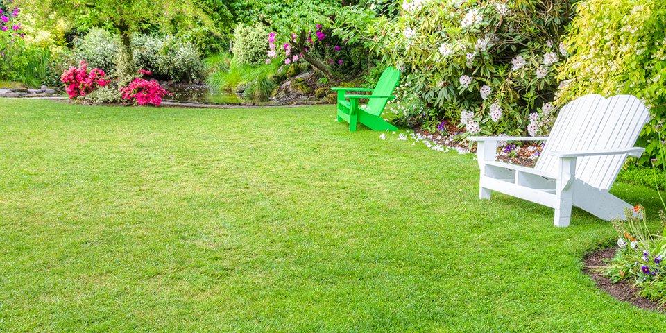 Proper Lawn Care During Summer Months Urbanfarmonline Com