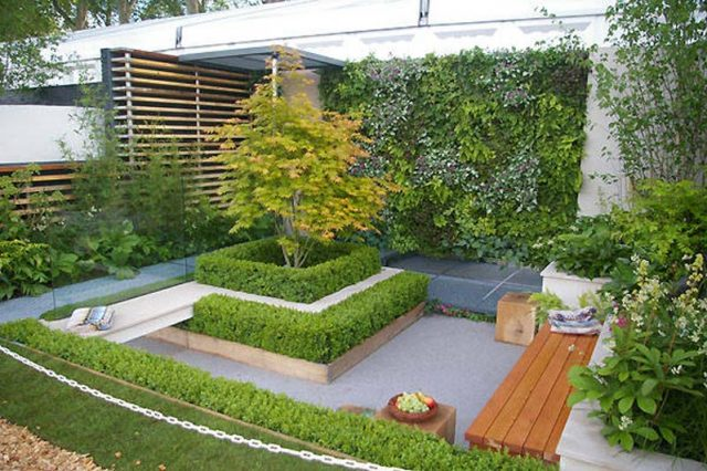Urban Gardening Ideas And Tips For A Small Green Space