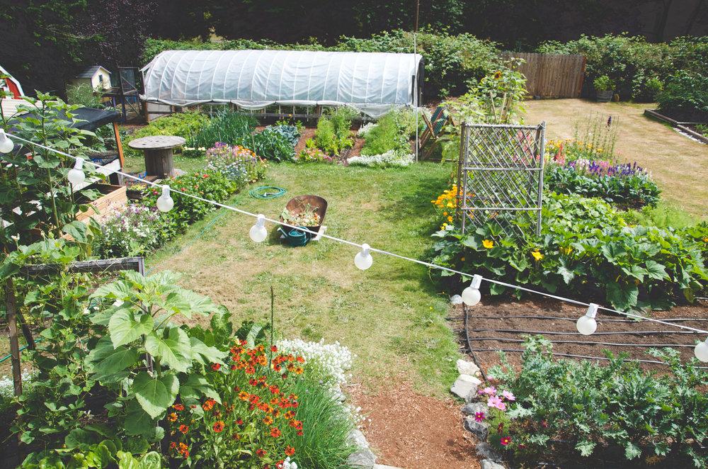 How To Start An Urban Flower Farm Urbanfarmonline Com